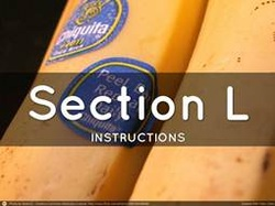 Section L. Instructions, Conditions, and Notices to Offerors